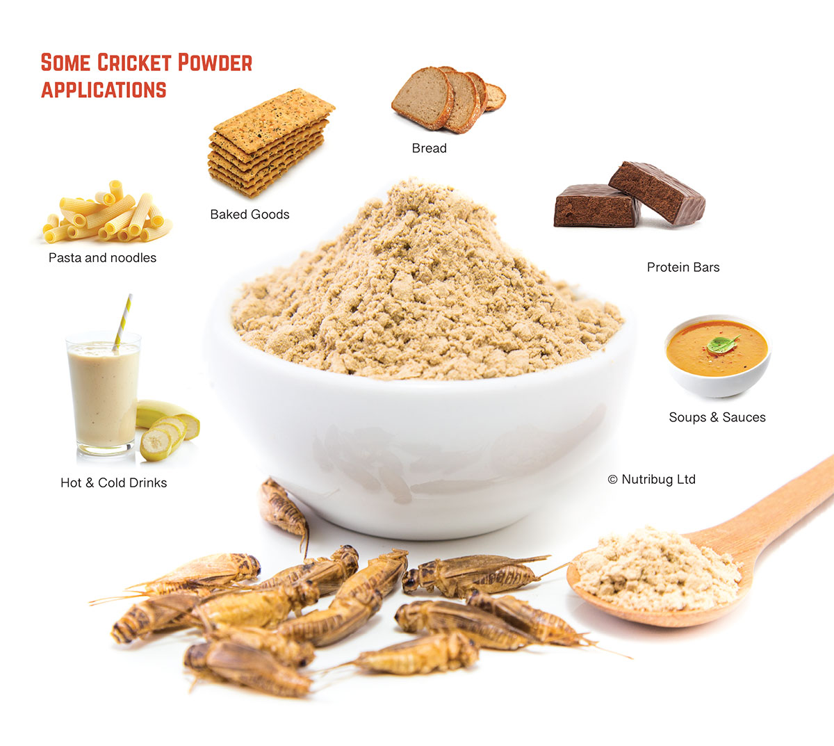 cricket powder applications