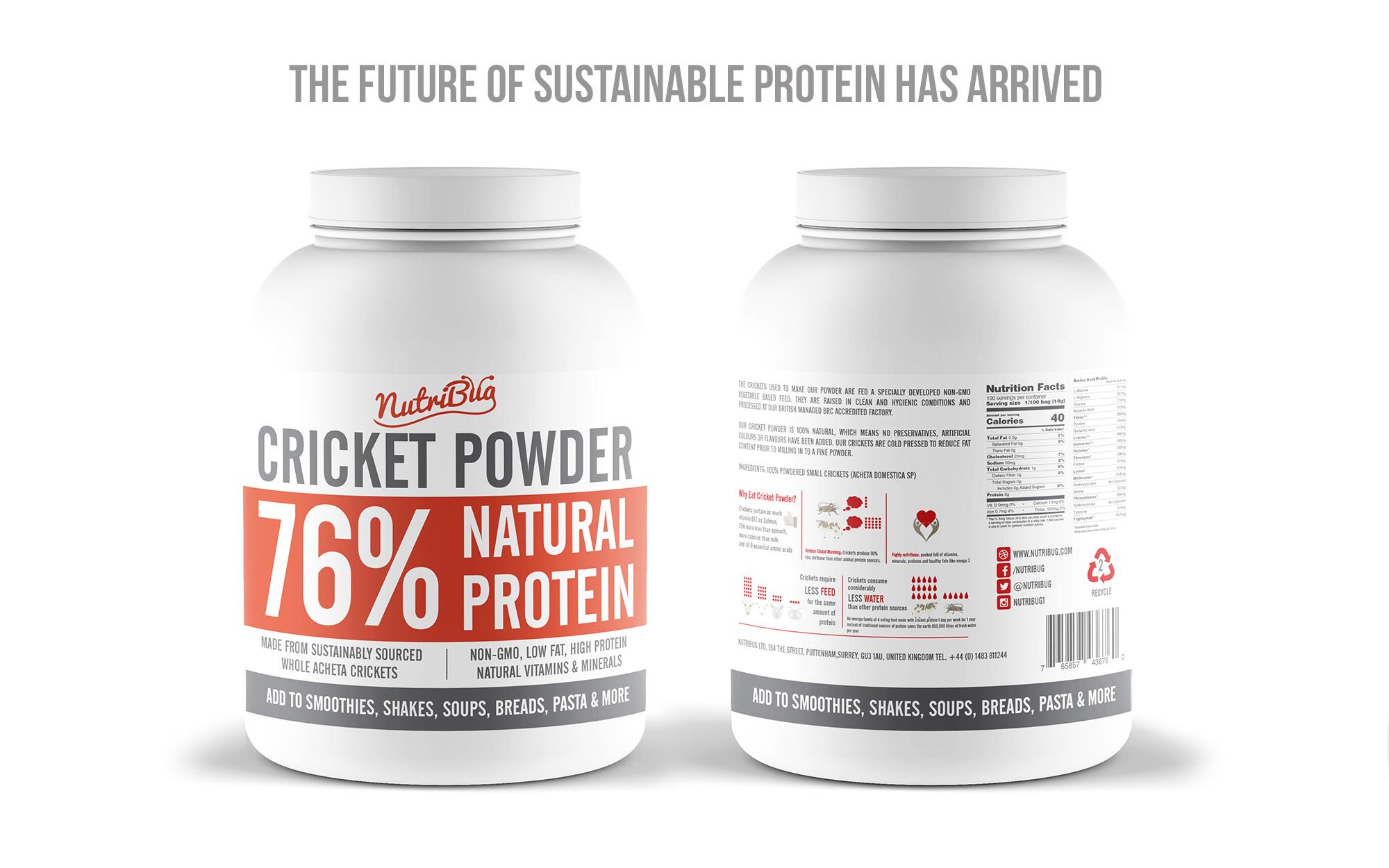 future sustainable cricket protein